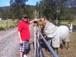 cam-horse